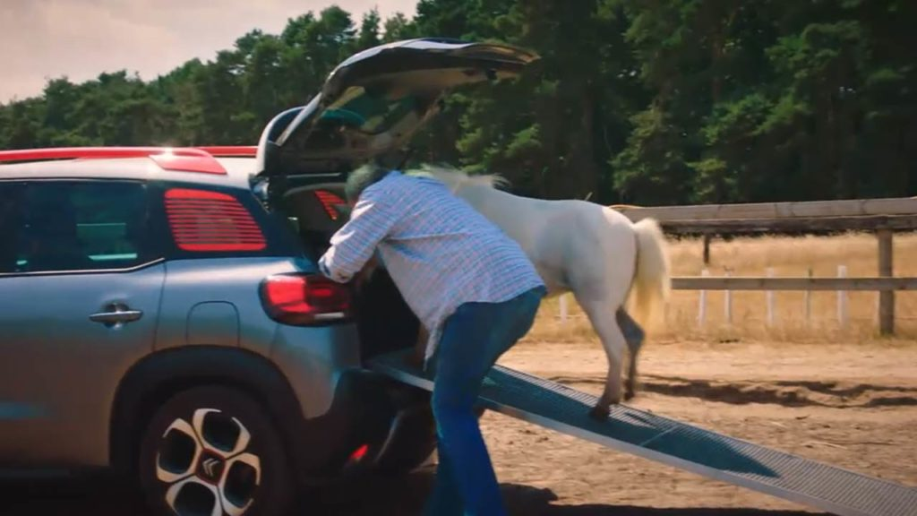 c3-aircross-can-it-fit-a-horse